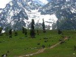 Предупреждение о сильном землетрясении и оползнях в регионе Кашмир