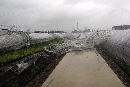 Тайфун Хайкуи нанес удар по Китаю