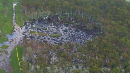 Проседание грунта в штате Луизиана становится угрожающим