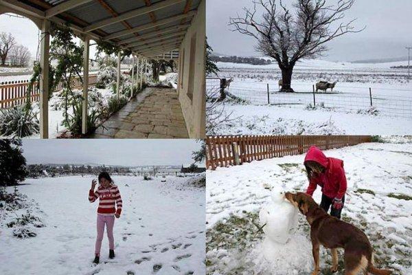Австралийцы стали свидетелями редкого снежного шторма