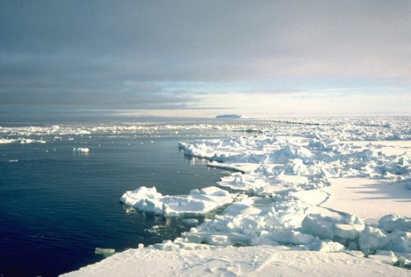 Арктика сужается, Антарктика растёт