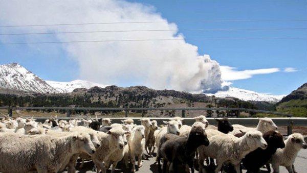 В Чили объявлен красный код опасности