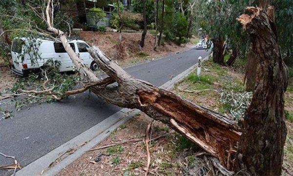Австралия пережила два торнадо