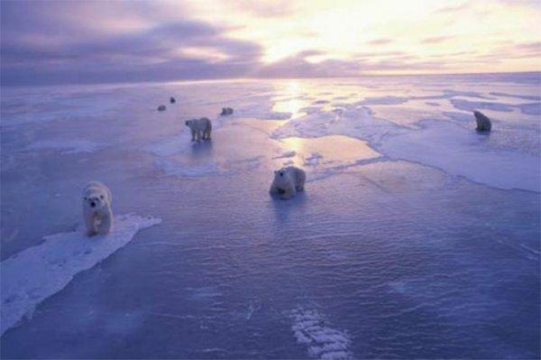 Странная «невесенняя» погода является следствием таяния ледников
