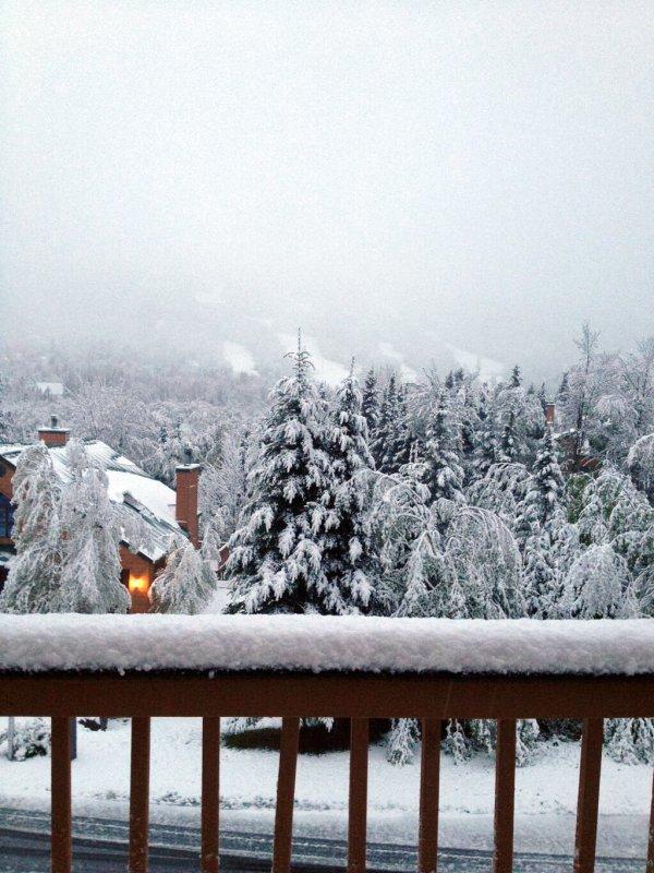 Снежное нашествие в штате Нью-Йорк