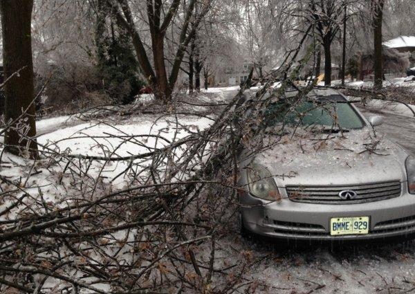 О последствиях ледяного шторма в Торонто