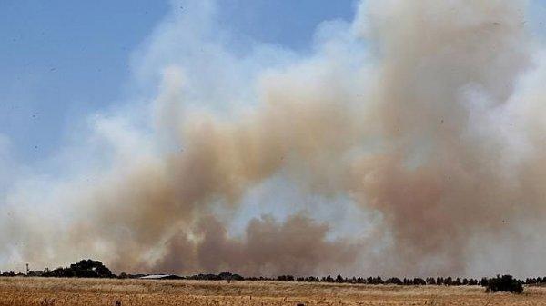 Тепловая волна в Австралии набирает обороты