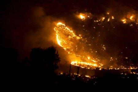 Наука подсчитывает количество выброшенного углерода во время пожаров в Красном Центре в Австралии