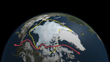 Площадь ледовых покрытий в Арктике продолжает уменьшаться, достигая второго минимального уровня